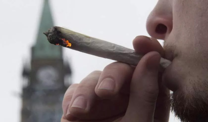 Enform Calls for Legal Cannabis Ban in Canada's Oilpatch
