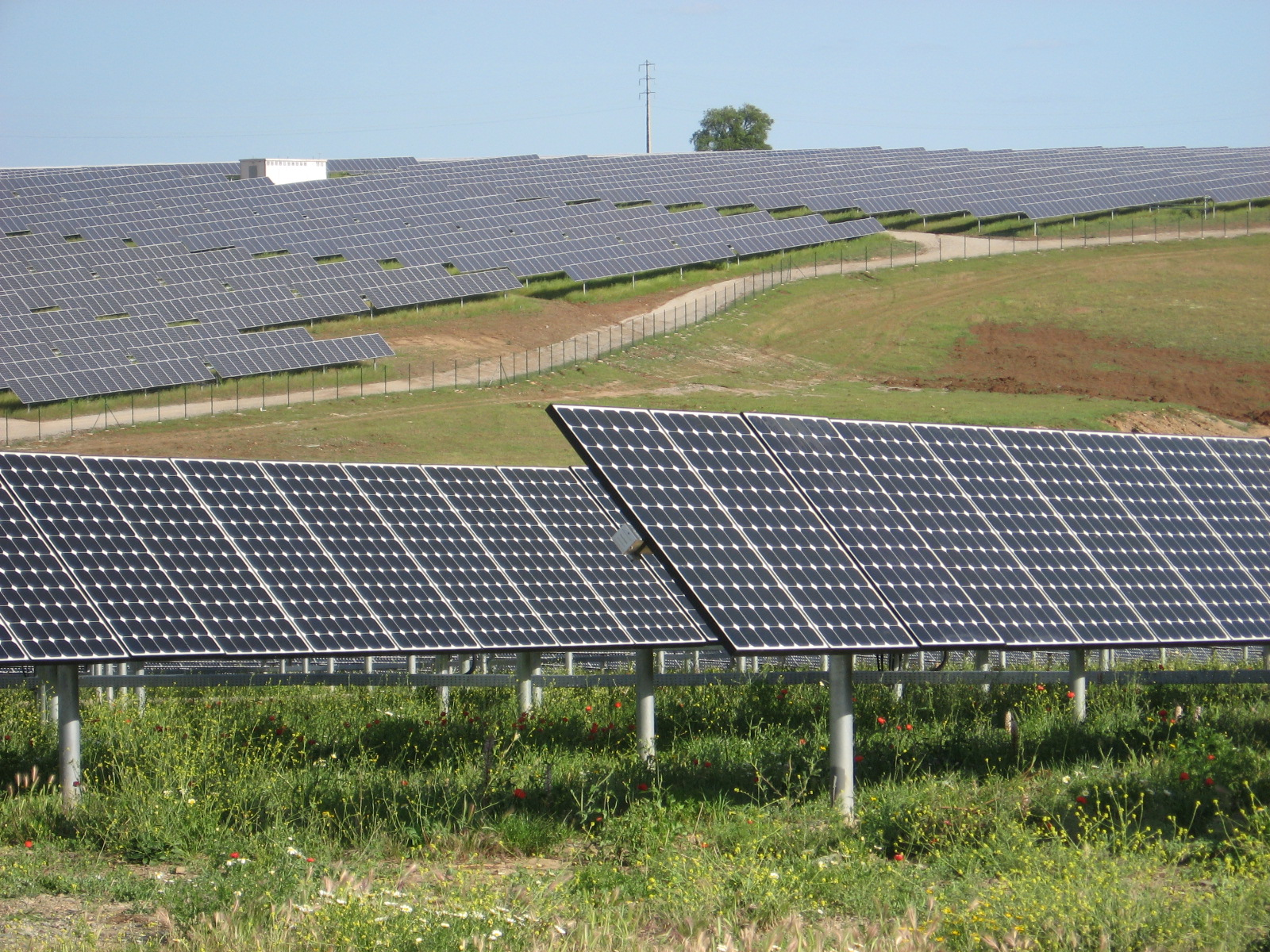 Bringing More Solar Jobs to The Palmetto State - HCS Renewable Energy joins SBA