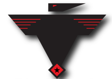 black-hawk-energy-services-logo